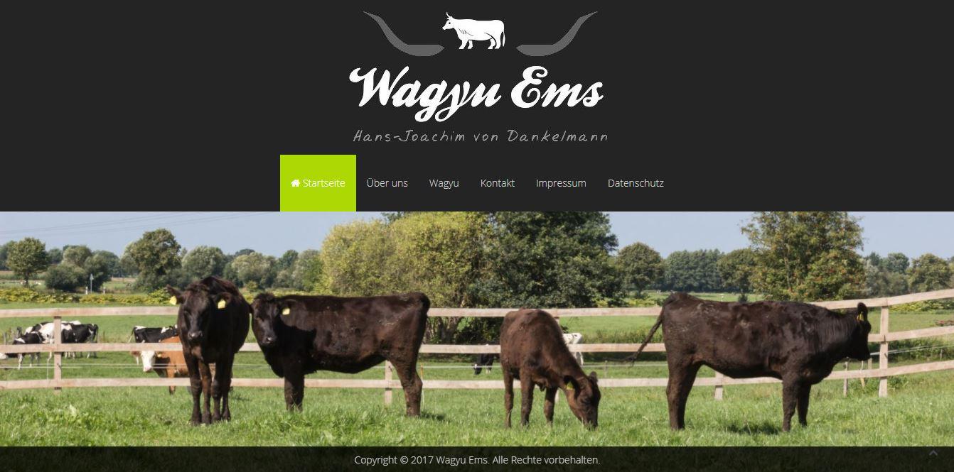 wagyu-ems.de